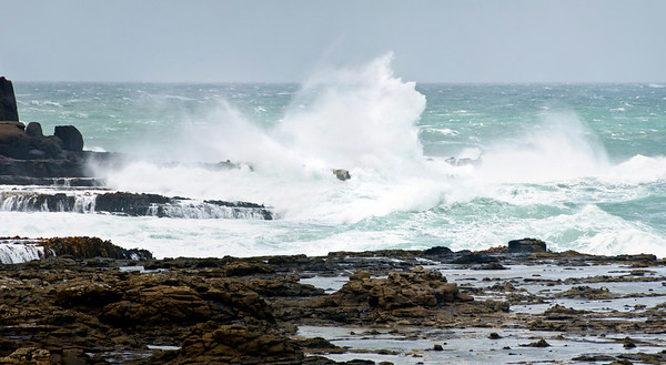 Breakers at Curio Bay on a windy summer day The Catlins South Island New Zealand