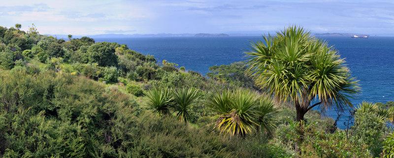 Coastline Tiritiri Matangi Island New Zealand - 10 Sep 2006