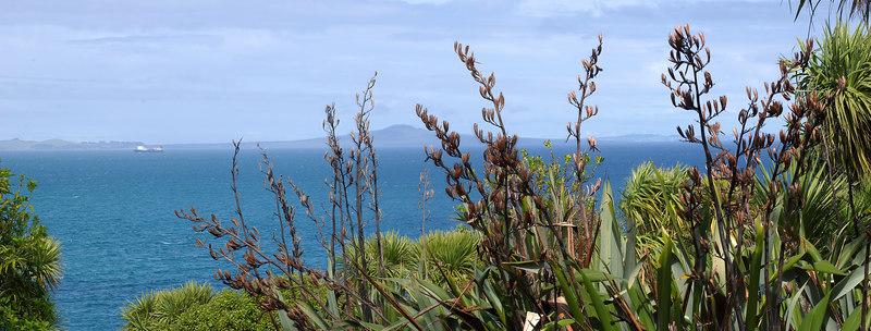 Rangitoto from Tiritiri Matangi Island New Zealand - 10 Sep 2006