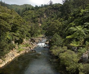 Stream joining the Ohinemuri river Waikino New Zealand