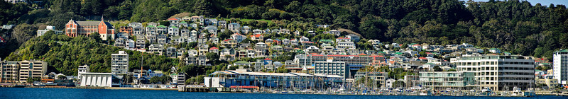 Oriental Parade Marina Wellington