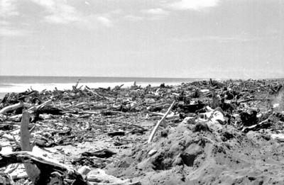 Flotsams Westport  West Coast New Zealand - 197X