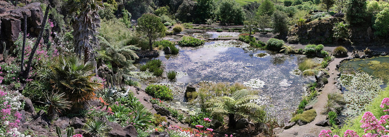 Wright's Watergardens Patumahoe Franklin