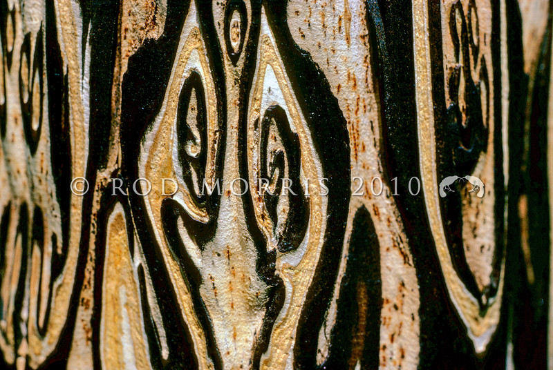 11009-01016 Mamaku, or black tree fern (Cyathea medullaris) exposed detail of trunk, the pattern is caused by hard black stipe bases standing out against the soft white pith