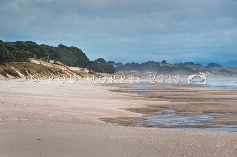 DSC_4616 Exposed sandy surf beach at low tide, East Coast of the North Island. Pakiri Beach