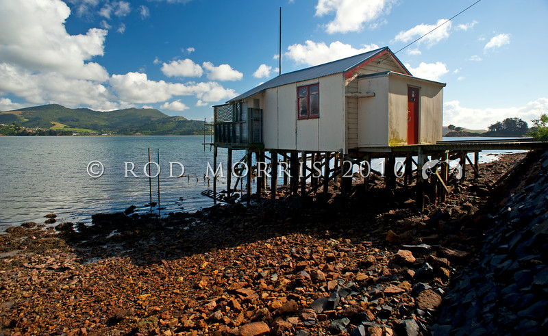 DSC_3182 Boat shed at low tide. Broad Bay, Otago Harbour *