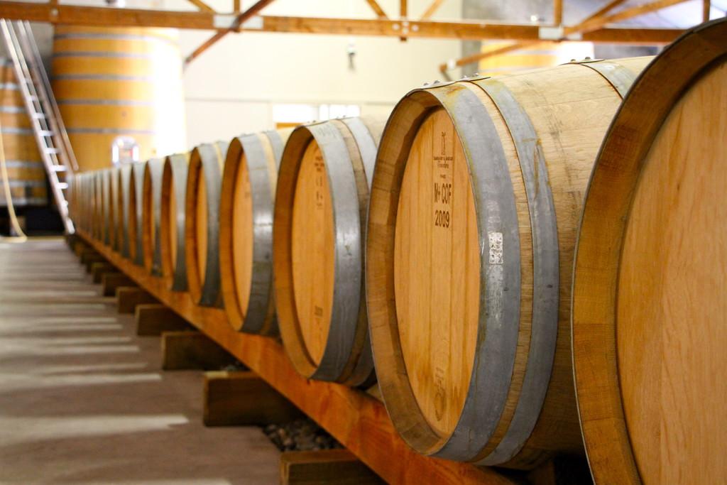bubbly grape wine tours