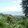 View from the hill where at Ahu Ahu (where wedding took place and where we stayed in New Plymouth)