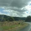 Auckland to Rotorua