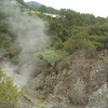 Wai-O-Tapu Thermal Park. Weird looking stream running through the valley in the park - it steamed a little.