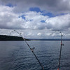 Trolling for trout, Lake Taupo.