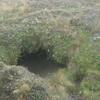 Hobbit hole?