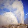 11011-27505  Rotorua scenery. Pohutu Geyser erupting with full moon in sky *
