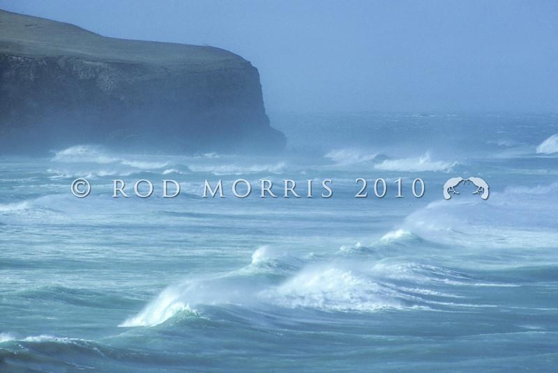 11011-80005 Otago Peninsula seascape. South-westerly swell off Allans beach *