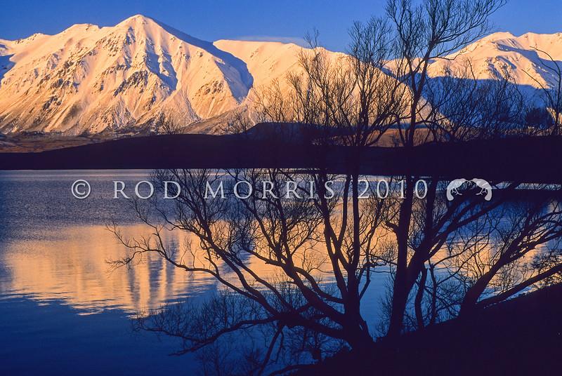 11011-06205 Lake Coleridge in mid-winter at dusk *