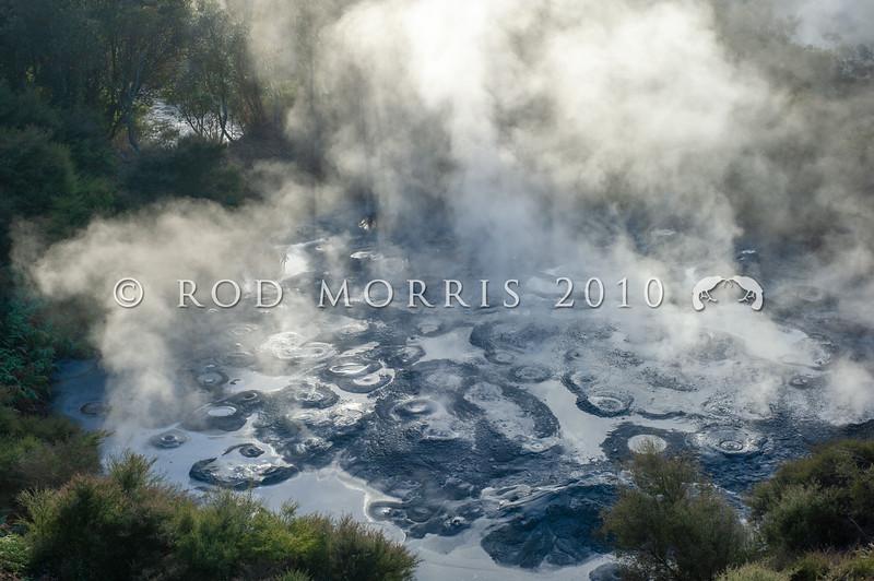 DSC_2913 Steaming mud pools at Whakarewarewa geothermal area. Rotorua *