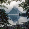 11011-81001 Fiordland scenery. Mitre Peak wrapped in cloud and framed by beech forest *