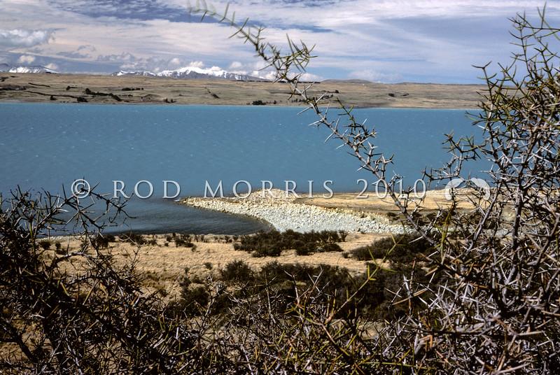 11011-75008 Mackenzie Country scenery. Looking over matagouri scrub at the shores of Lake Pukaki *