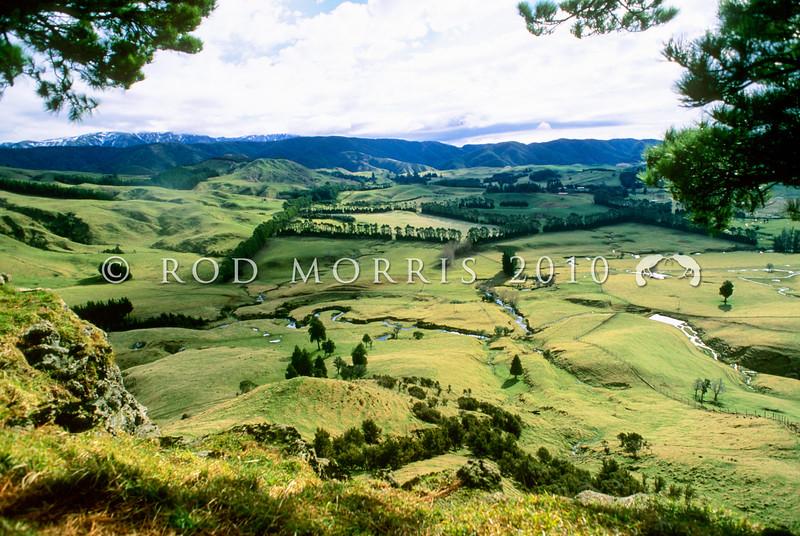 11011-00008 Rural farmland in the foothills of the Kaweka Range, Hawkes Bay *