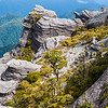 DSC_7435 Denniston Plateau escarpment edge *