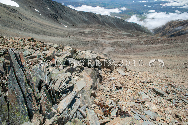 DSC_6718 The extensive scree slopes of Glacier Basin in the St Mary's Range above Kurow *