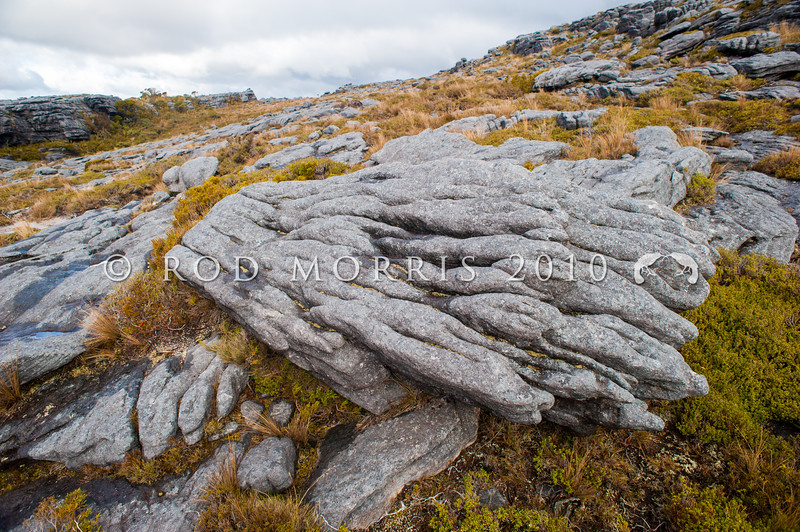 DSC_7476 Rock formations on Denniston Plateau *