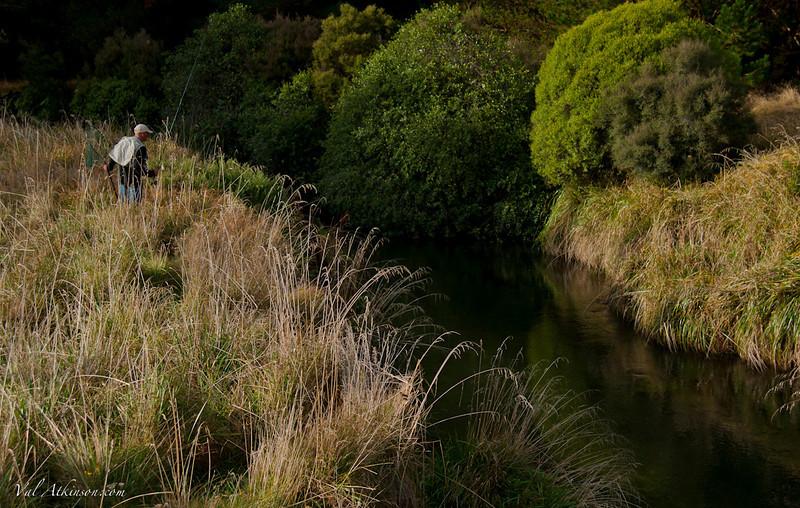 Magic light on the Taharua Stream, Poronui #2