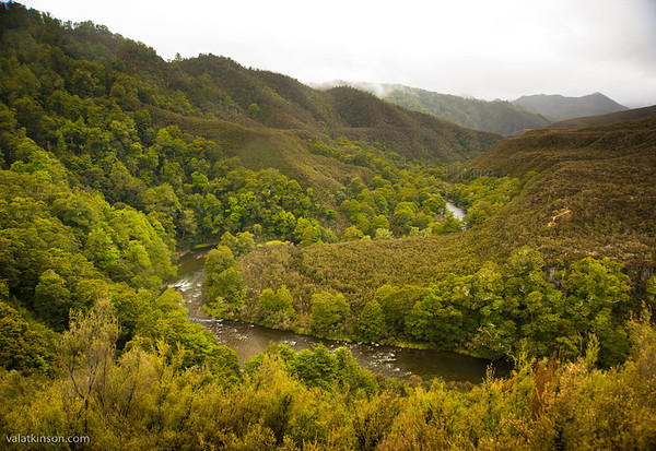 overview of nz wilderness stream