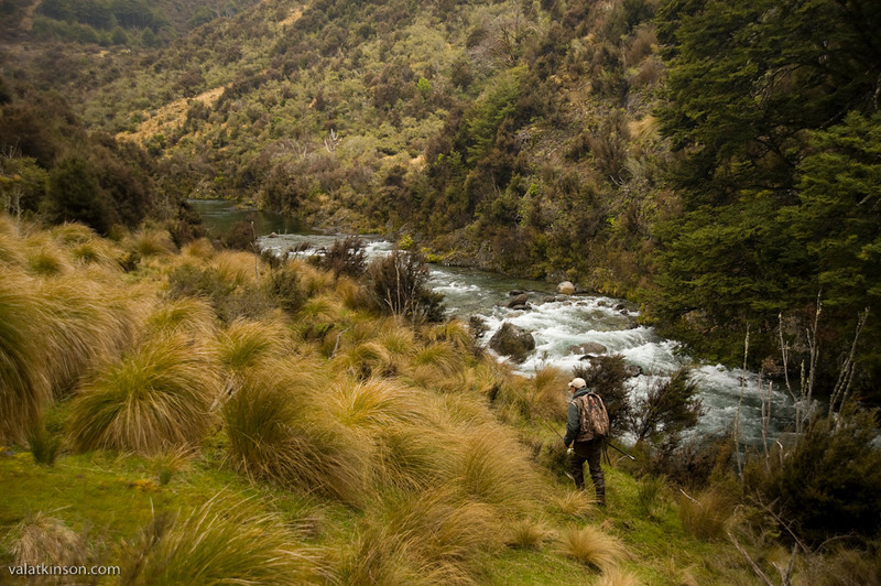 working our way upstream on a wilderness river #3