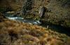 poronui's mystery creek #1