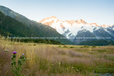 South Island Scenery (14 of 40)
