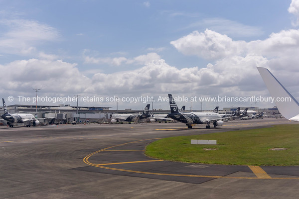 Air New Zealand aircraft parked at Auckland airport.