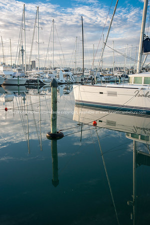 Westhaven Marina, Auckland. New Zealand images.