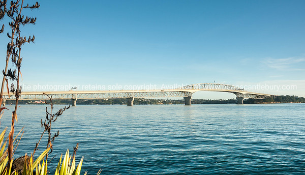 Waitemata Harbour and the bridge.