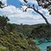 Harataonga Beach below from top of Loop Track on Great Barrier Island.
