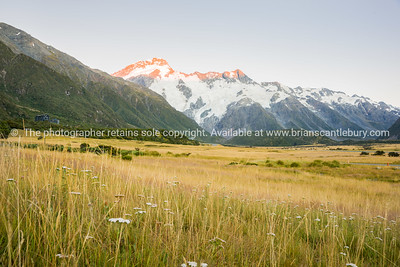 South Island Scenery (8 of 40)