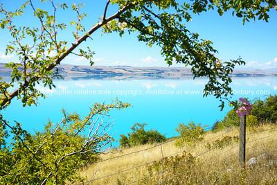 South Island's Lake Pukaki.
