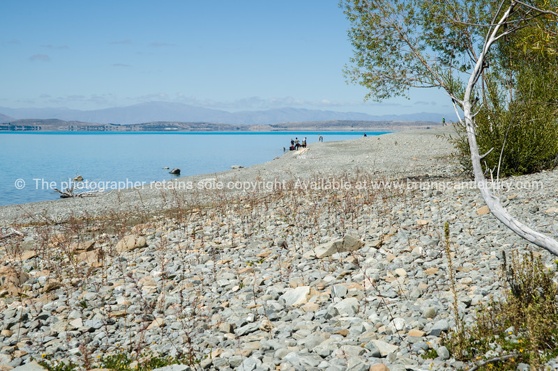 View through green trees across stony shore of Lake Pukaki.