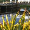 Bridge reflections, Opito Bay, Coromandel, New Zealand.