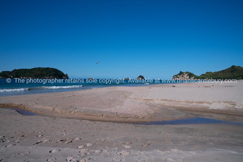 Hahei beach white sand and blue sea.
