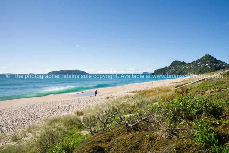Taurua Ocean Beach. Coromandel Peninsula