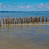Old Burke Street Wharf remains, Thames. New Zealand images.