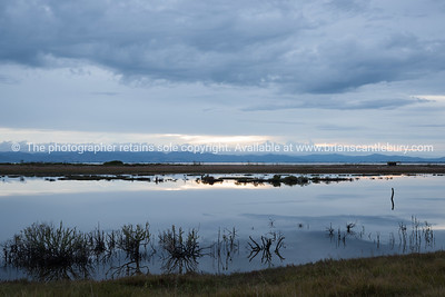 miranda-sunrise Tauranga photos, Photos of Tauranga Also see; http://www.brianscantlebury.com/Events  http://www.blurb.com/b/3811392-tauranga