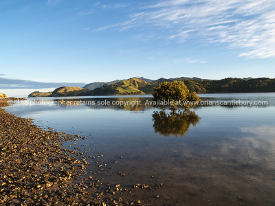 Colville harbour, scenic Coromandel. New Zealand images.
