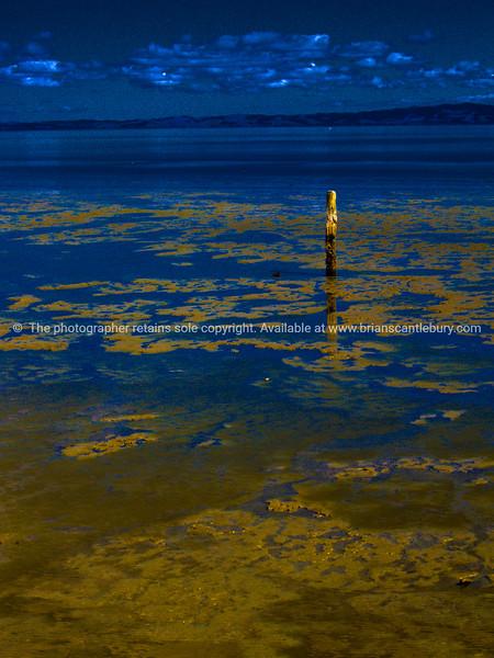 Estuary scene under dark sky. Firth of Thames. New Zealand images.