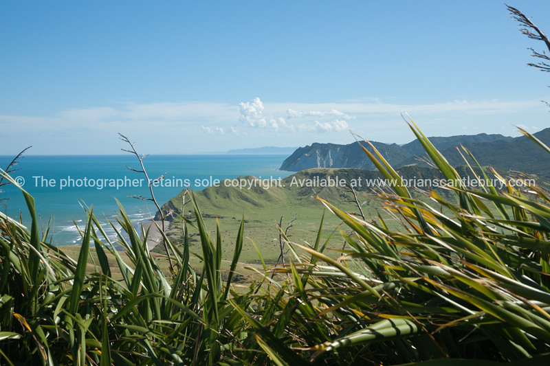 Coastal landscape, beach and foreshore beyond spring grass and outlook