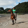 Horses are a way of life on New Zealand's East Coast. Rihari O'Brien shows his horse off on Te Kaha Beach. Model Release; Yes.