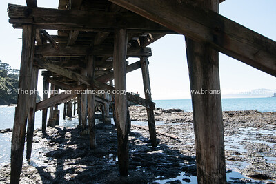 Under the wharf, Hicks Bay Wharf. New Zealand images.