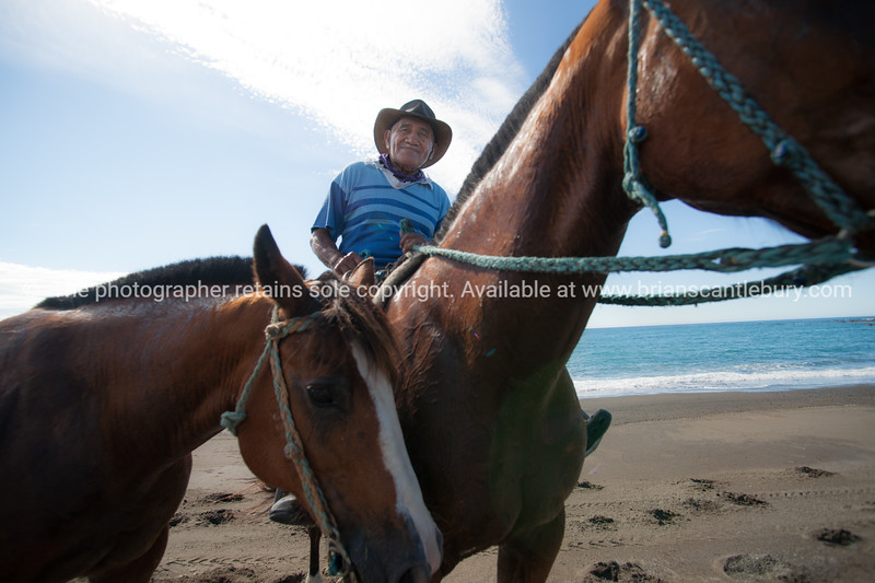 Local man on beach with two horses.