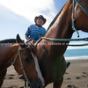 Horses are a way of life on New Zealand's East Coast. Rider stops and helpfully presents his horses for the camera. Thank you. Model Release; No.
